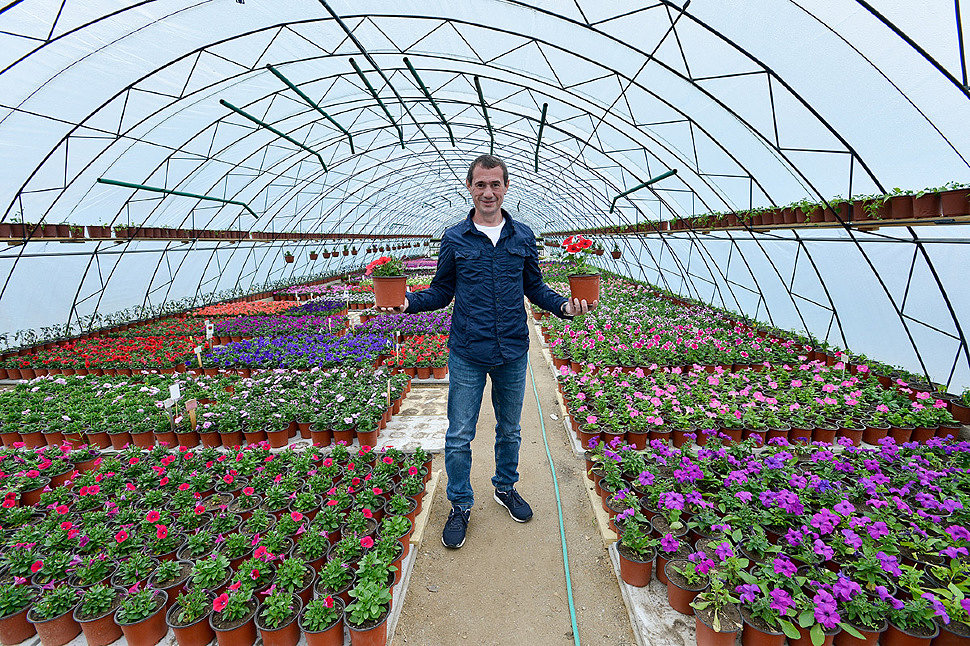 Выращивание цветов как бизнес, вложения: от 3